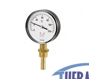Termometro Gambo Radiale 5 cm - 91646050