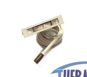 Termometro Rettangolare 11x59